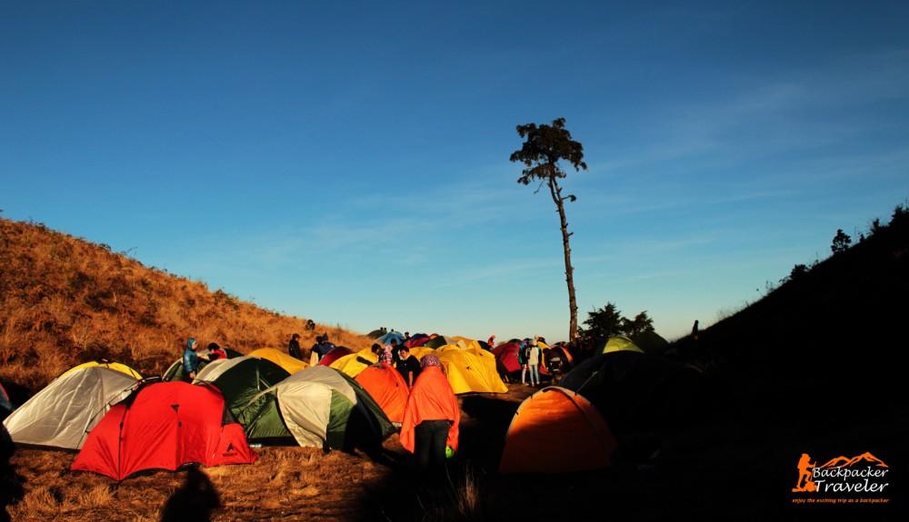 Camping Ground Gunung Prau Dieng